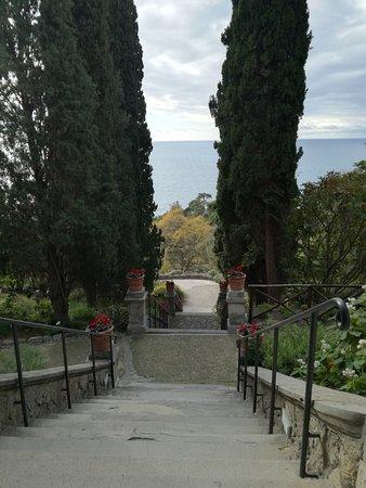 Giardini Botanici Hanbury : viale