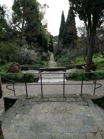 Giardini Botanici Hanbury : Scalinata