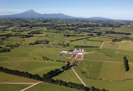 New Plymouth, Nueva Zelanda: Farm tours available