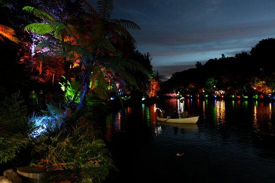 New Plymouth, Nueva Zelanda: TSB Bank Festival of Lights Night Tours - photo by Rob Tucker