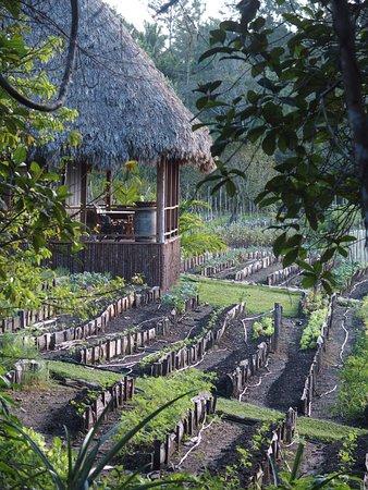 Blancaneaux Lodge Bild