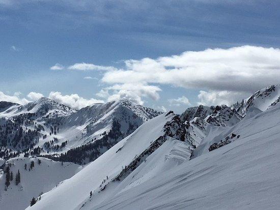 Alta, UT: Typical ski terrain