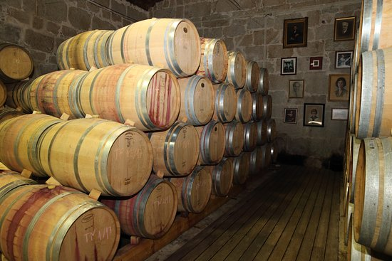 Braganca, Portugal: Sala de Estagio de Vinhos