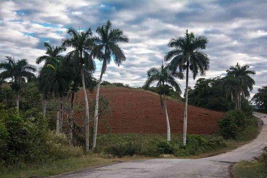 Cayo Jutia Beach: приличная дорога из Cayo Jutias