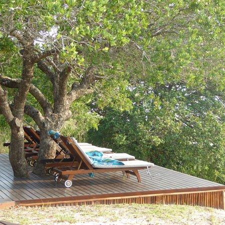 Maputaland Coastal Forest Reserve, África do Sul: photo5.jpg