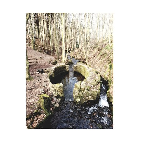 Stonehaven, UK: 1521727546828_large.jpg