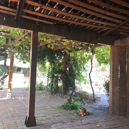 San Carlos, Χιλή: Casona Violeta