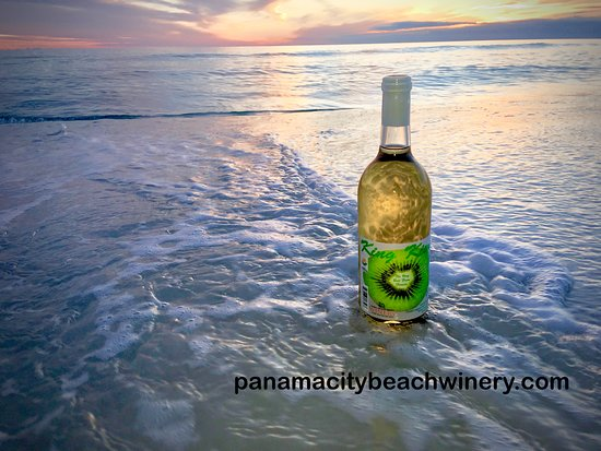Panama City Beach Winery: Kiwi Wine - Enjoy refreshing Kiwi wine, made in Florida with 100% real Kiwis!