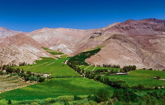 Sunny Travel Tour Operador: Tour al Mistico Valle del Elqui