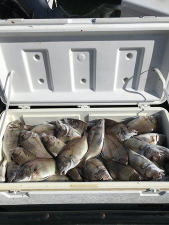 CompTime Fishing Charters