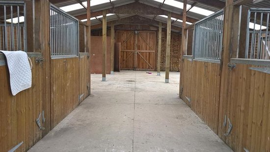 Llanwrtyd Wells, UK: Stabling and grazing available for our equine guests.