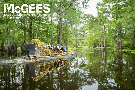 Henderson, LA: Airboats are a great way to explore the deepest portions of the swamp!