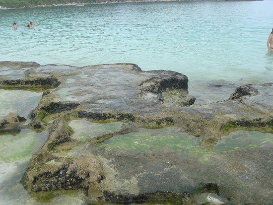8c8752bad89b8 Local onde há mais peixinhos - Foto de Praia do Farol, Arraial do ...