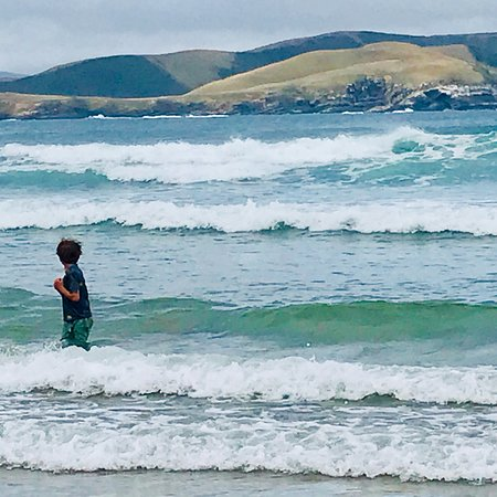 Curio Bay, نيوزيلندا: photo0.jpg