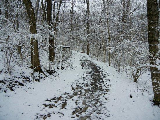 Lincoln Ridge Park