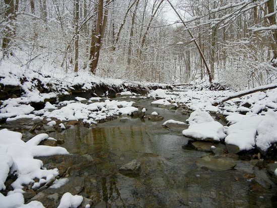 Independence, KY: creek in the March snow