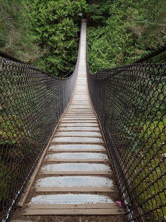 Vancouver Nord, Canada: Suspension bridge at Lynn Canyon