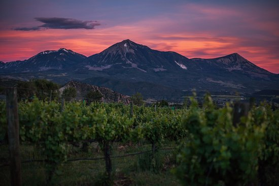 Paonia, CO: Nestled in the West Elks Mountains, our winery estate is a beautiful and peaceful respite.