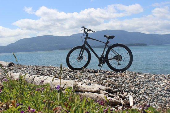 Lummi Island, WA: Bike one of the loops for a great view of the water, or take a more challenging route.