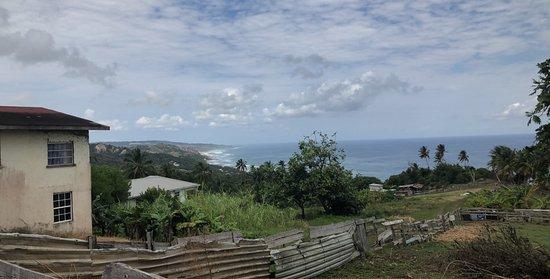 Saint Michael Parish, باربادوس: Barbados