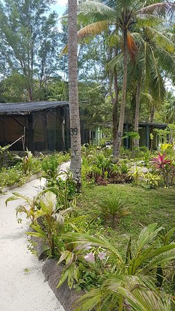 Pulau Mantanani Besar, มาเลเซีย: 20180316_115521_large.jpg
