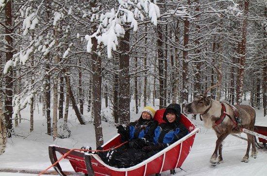 Snowmobile Safari to Reindeer Farm...