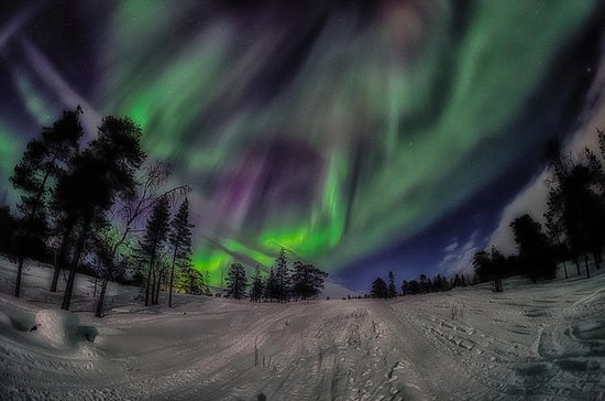 Northern Lights Snowmobile Driving...