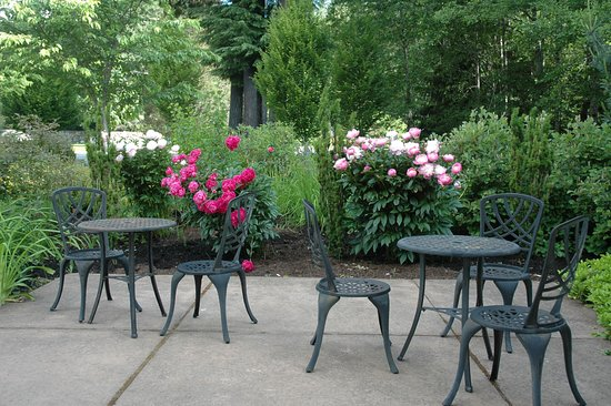 Take Break Coffeebreak : A lovely patio to take a coffee break eat breakfast or lunch