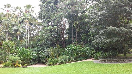 Cairns Region, Australia: Cairns Botanical Garden