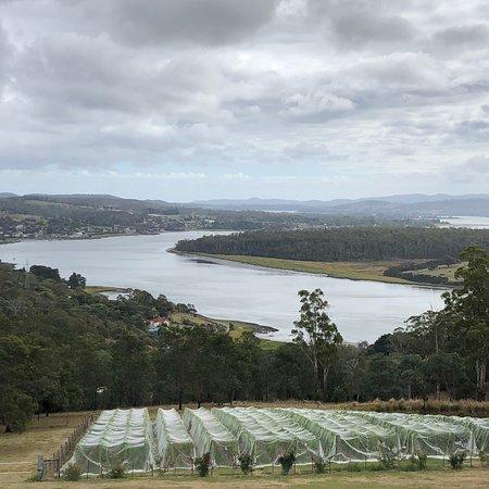 Rosevears, Australia: photo3.jpg