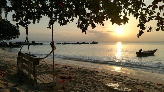 Sari Pacifica Hotel, Resort & Spa - Lang Tengah : IMG_20180314_190015_large.jpg