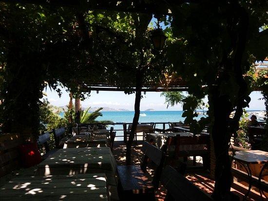 Harbour House Restaurant照片