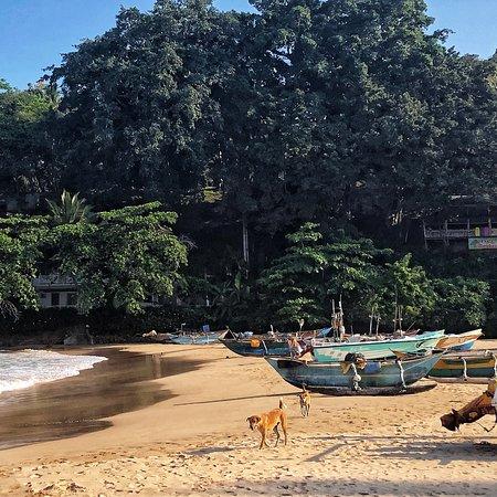 Talalla, Sri Lanka: photo0.jpg