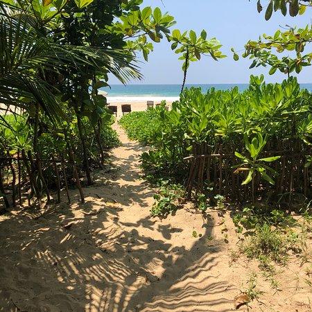 Talalla, Sri Lanka: photo5.jpg