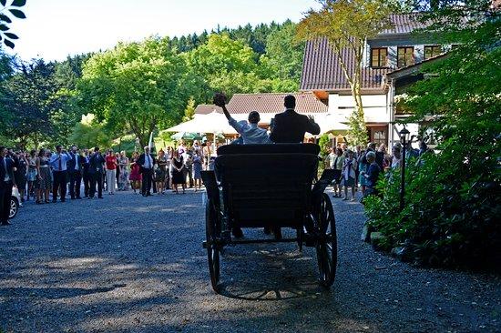 Iserlohn, Alemania: Kutschfahrt Hochzeit, aus dem Wald kommend.