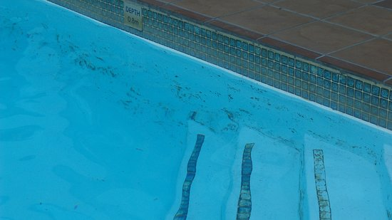 Protea Hotel Worcester Cumberland : Moisissures piscine