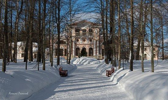 Vologda Oblast, روسيا: Вид на усадьбу из парка