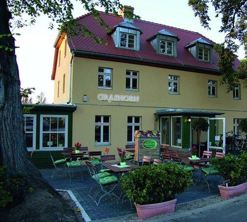 Schwielowsee, Alemania: Terrasse