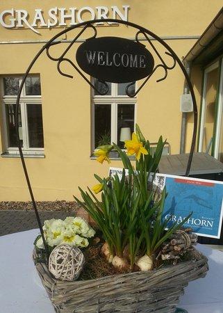 Schwielowsee, Alemania: Willkommen