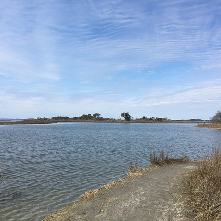 Assateague Beach: photo1.jpg
