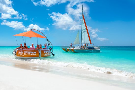Palm - Eagle Beach, Aruba: Octopus Aruba Saling And Snorkeling New Aqua Donut Pirvate Boat Private Sailing Trips