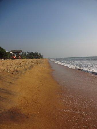 Fantastic Beach Hotel