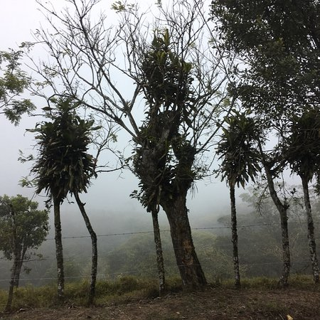 San Luis, Kosta Rika: photo3.jpg