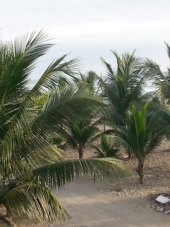 Ayampe, Ecuador: View from the deck.