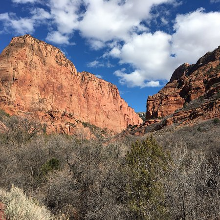 Kolob Canyons: photo1.jpg
