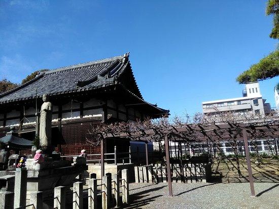 Fujii-dera Kannon Temple: P_20180324_083552_large.jpg