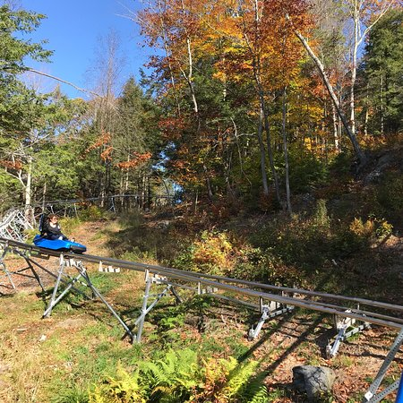 Charlemont, MA: Thunder Mountain Coaster