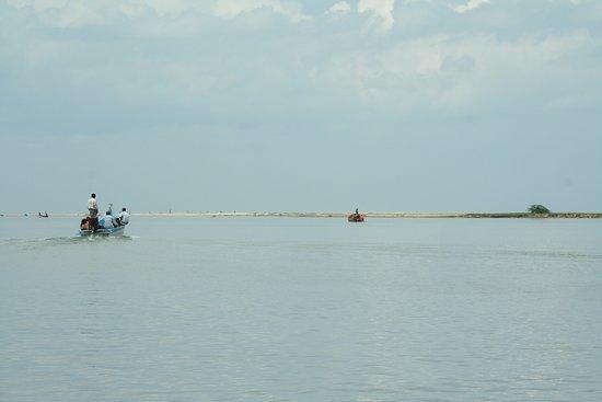 Nellore District, อินเดีย: Pulicat Lake