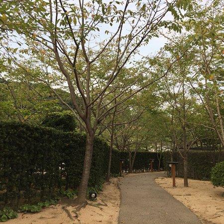 Oniishinoyu