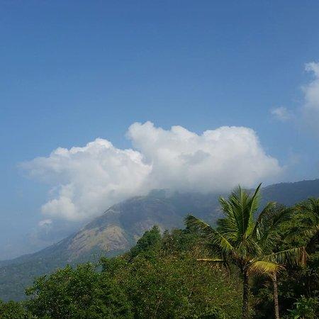 The Munnar Queen Resmi